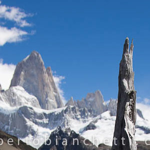 patagonia-natura