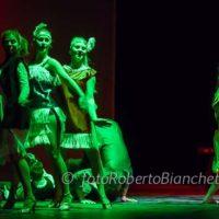 105 © F R Bianchetti IMG 9873