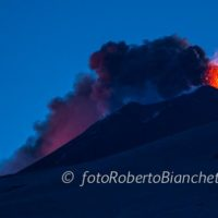 05 © F R Bianchetti  RBA0239