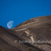 16 © F R Bianchetti  RBA0421