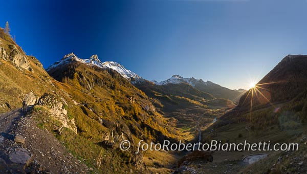 09 © F R Bianchetti  RBA9369 p