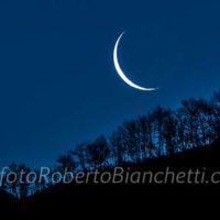 02 © F R Bianchetti  RBA5178