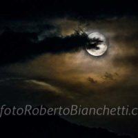 09 © F R Bianchetti  RBB8724