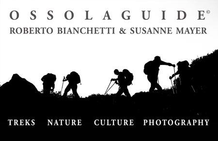 OssolaGuide card web EN